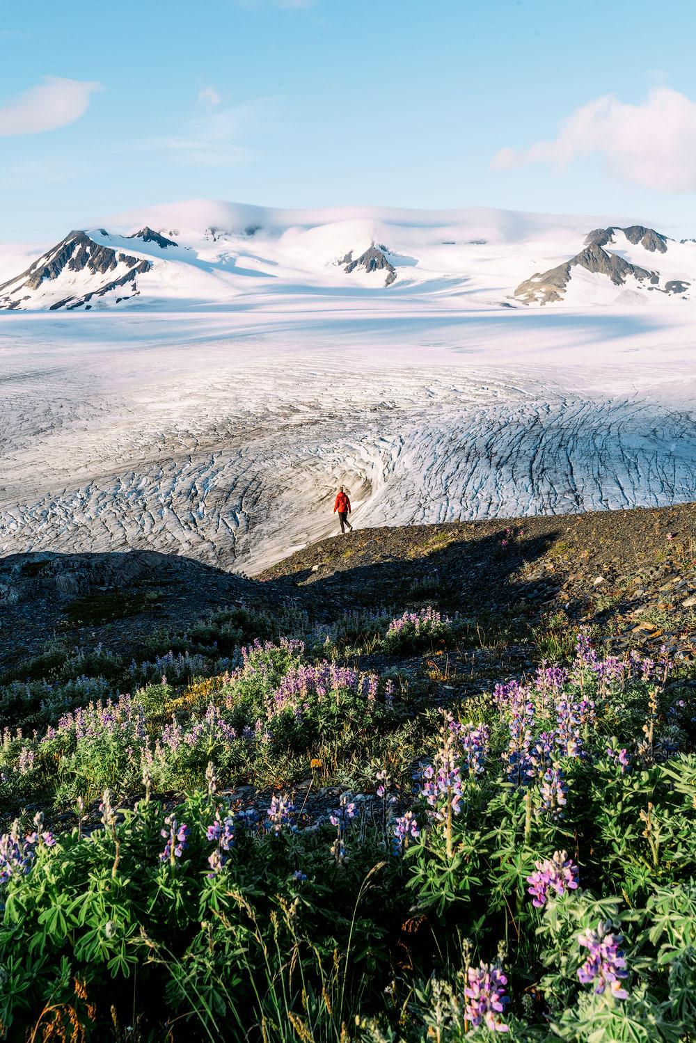 5 Epic Alaska Hiking and Backpacking Adventures Harding Icefield Kenai Fjords National Park Renee Roaming 2