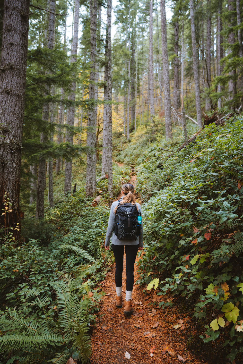 Olympic National Park Adventure Getaway 24 Hour Itinerary from Seattle Renee Roaming Mount Storm King Hike