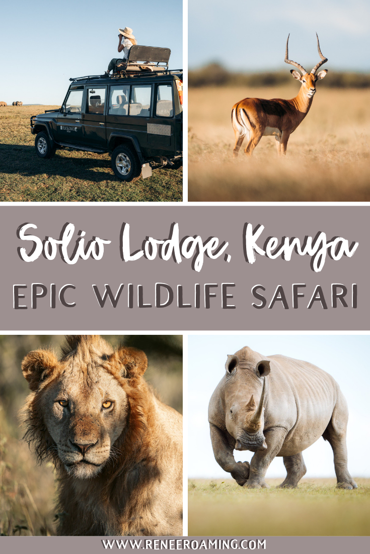EPIC Wildlife Safari at Solio Lodge in Kenya