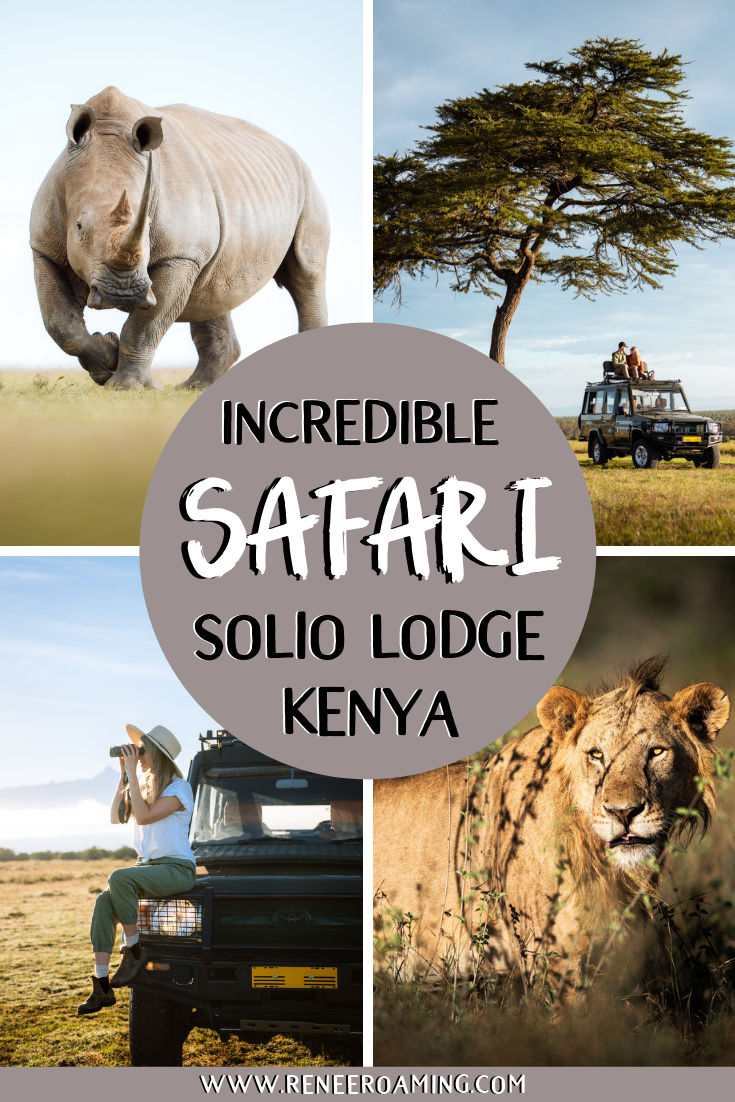 Incredible Wildlife Safari at Solio Lodge in Kenya