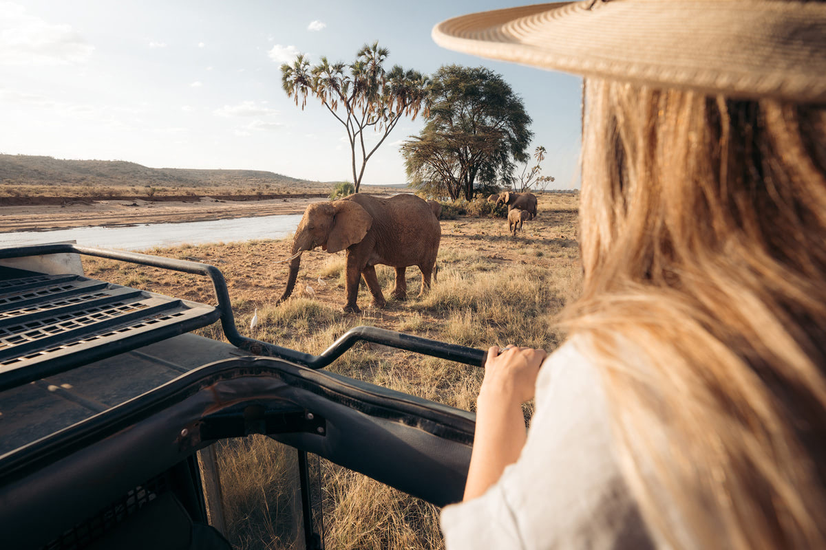 A Magical Stay at Ashnil Samburu Camp, Kenya - Elephant Safari