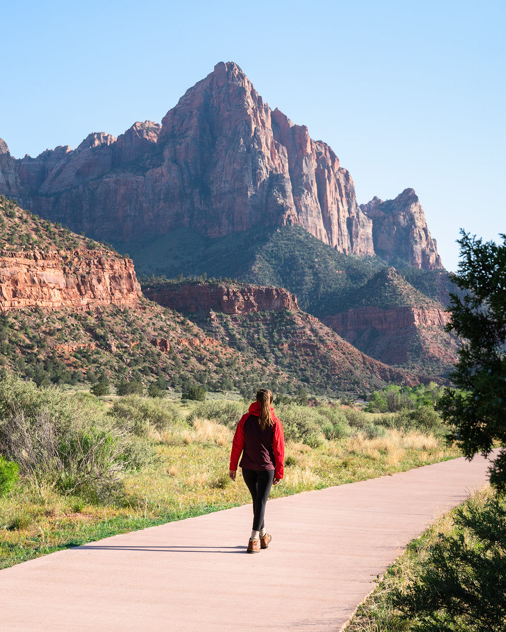 The Ultimate Guide to Exploring Zion National Park - Parus Trail