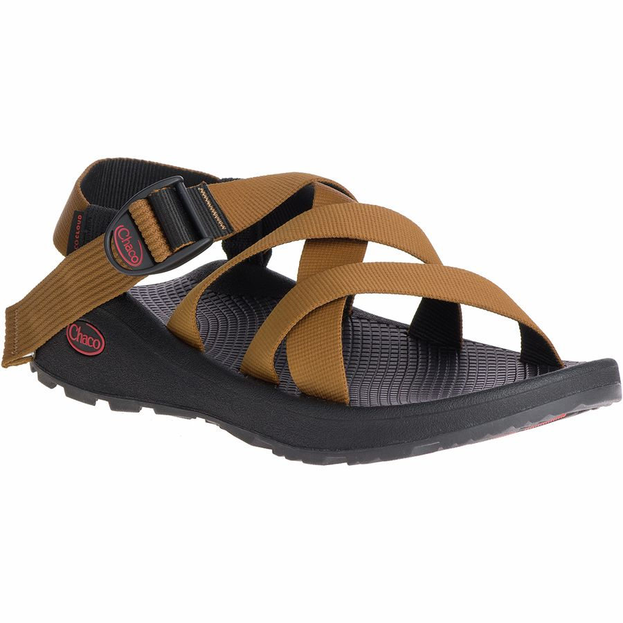 Best Hiking Sandals and Water Shoes for Men 2020 - Chaco Banded Z Cloud Sandal - Renee Roaming