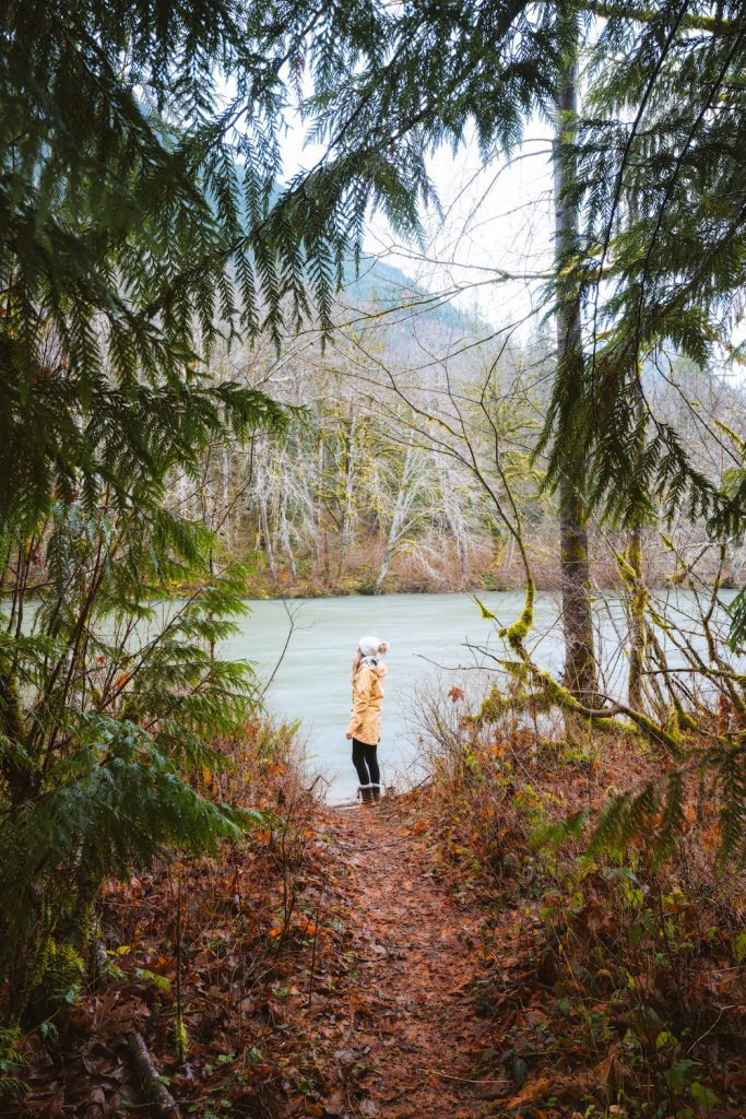 Cozy Cabins to Rent in Washington State - South Fork Riverfront Cabin - Renee Roaming