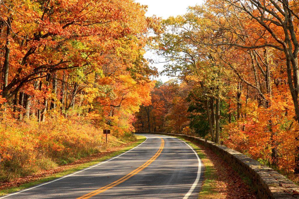 Shenandoah National Park Skyline Drive