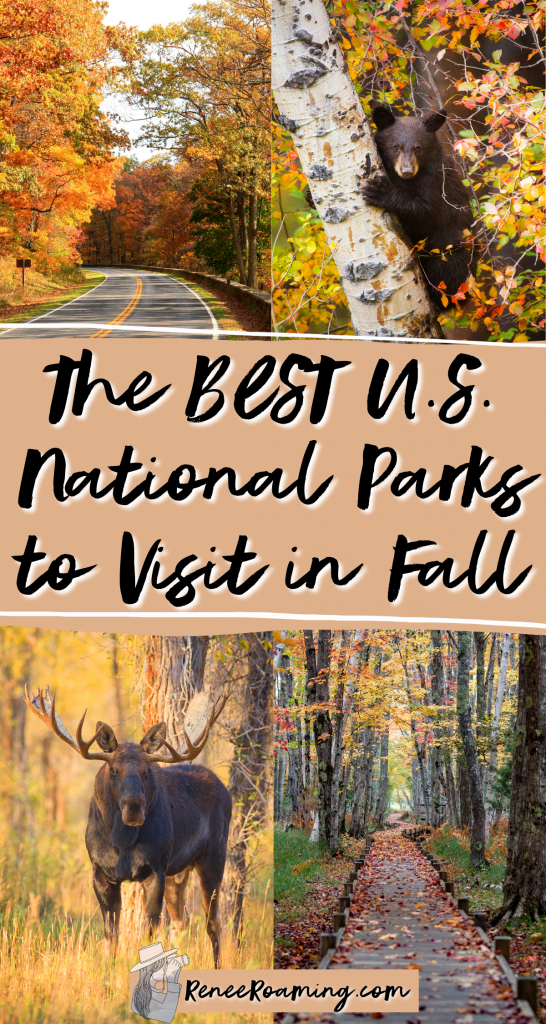 Fall is one of the best times of the year to take a national park adventure! Not only are crowds generally quieter and accommodation is cheaper, but you also get to see the beautiful fall foliage and changing colors! In this blog post I am sharing the 12 best national parks to visit in the fall. These recommendations also come from firsthand experience of someone who has traveled to every US national park! | national parks fall color | national parks fall foliage |