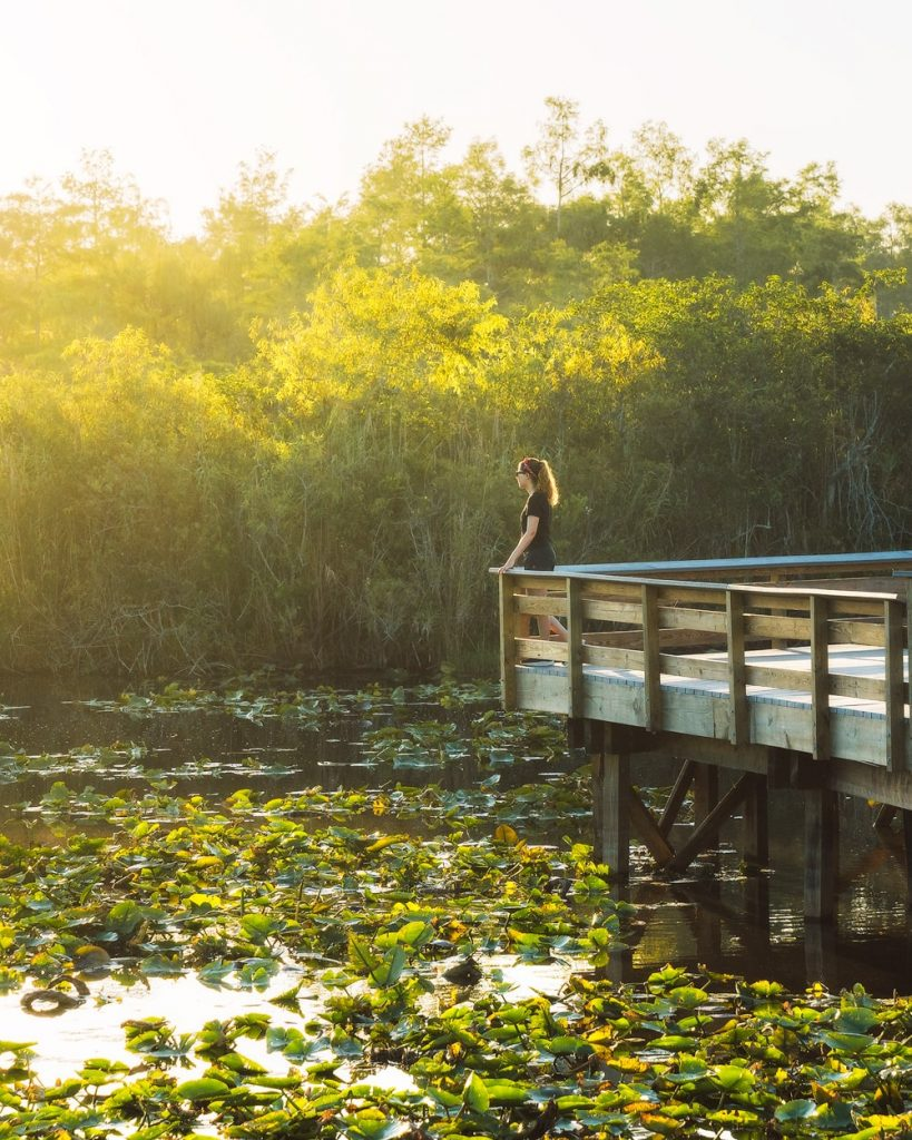 Everglades Hiking Trail