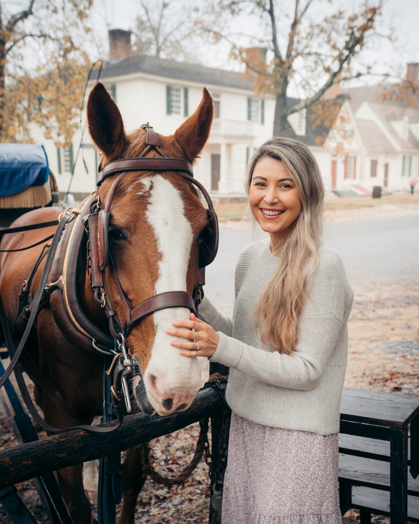 Williamsburg Virginia Guide and Itinerary - Colonial Williamsburg Horse and Carriage