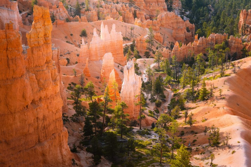 Ultimate Utah National Parks Road Trip Itinerary - Bryce Canyon National Park Hike