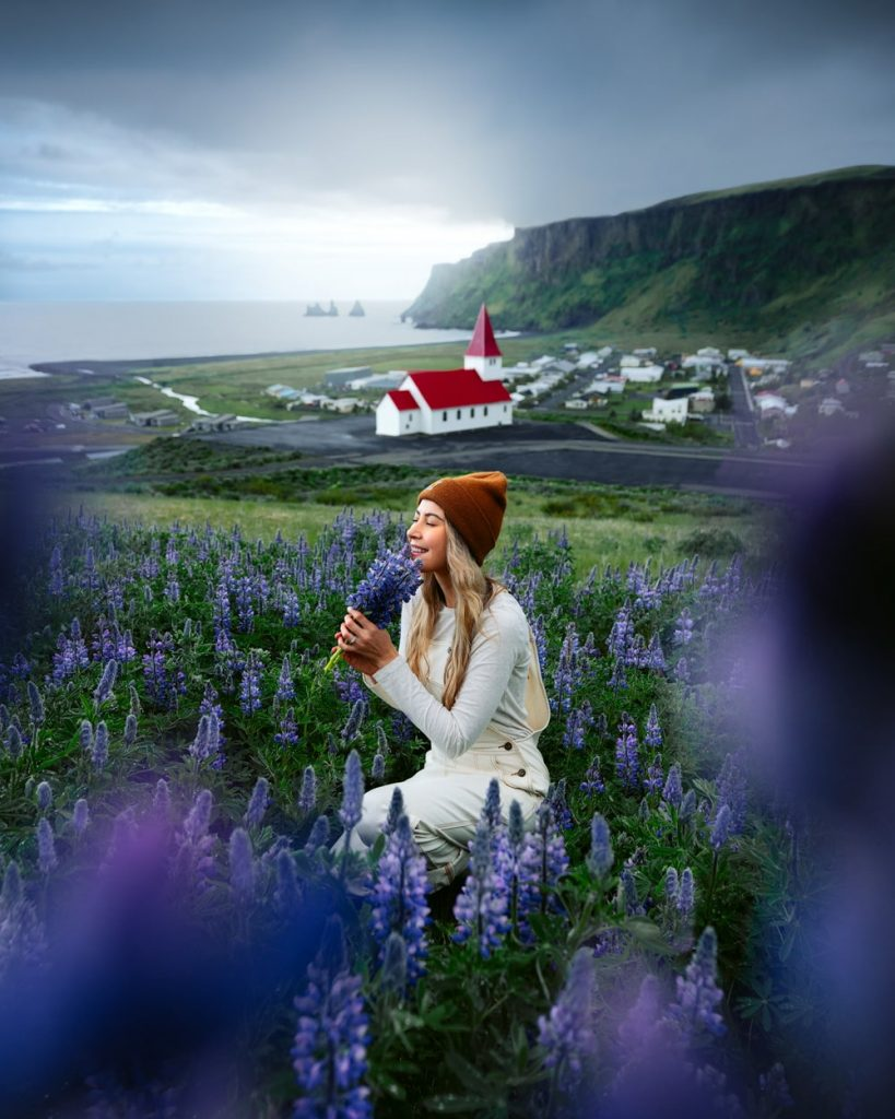 Incredible Iceland Road Trip Itinerary and Planning Guide - Vik Church Lupines