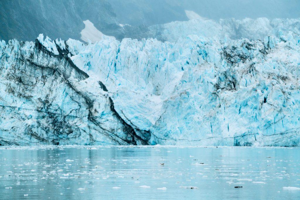 Visit Glacier Bay National Park